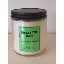 Eucalyptus Rain 1-Docht...