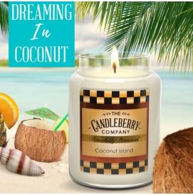 Coconut Island  570g