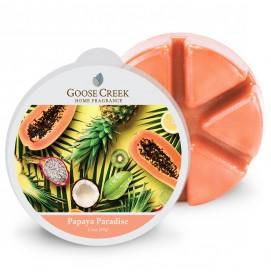 Papaya Paradise Wax Melts 59g
