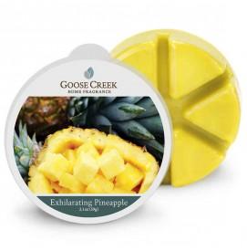 Exhilarating Pineapple Wax...