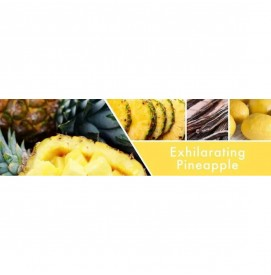 Exhilarating Pineapple Wax Melts 59g