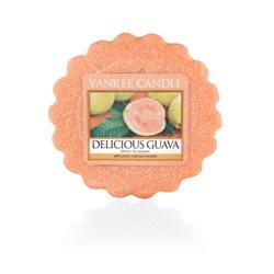 Delicious Guava 22g