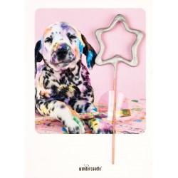Wondercard Dog