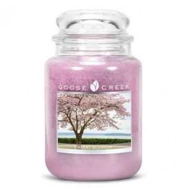 Cherry Blossom 680g